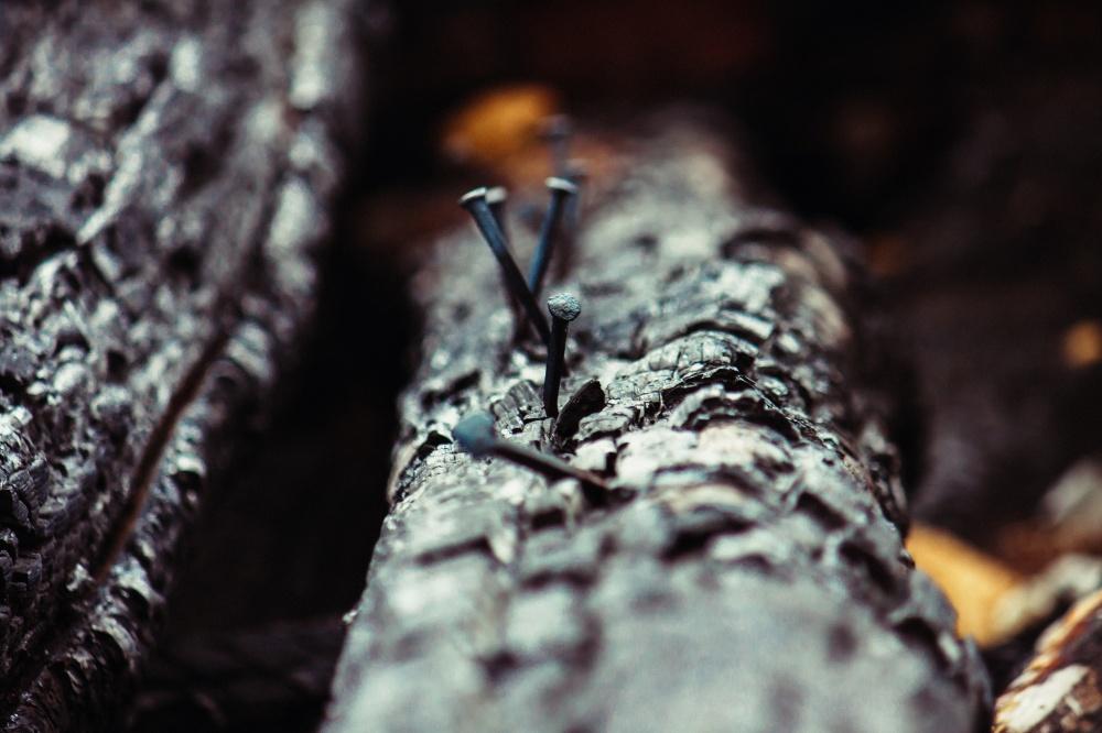 woodburned